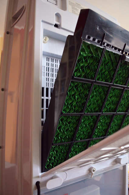 Der Filter zur Luftreinigung lässt sich auf der Rückseite leicht entnehmen und reinigen - etwa alle 14 Tage sollte man das erledigen.