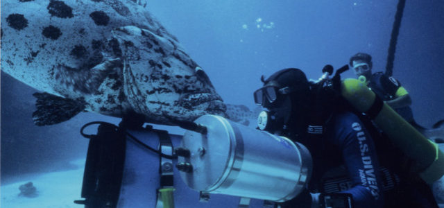 Atlantis – Traumwelt unter Wasser