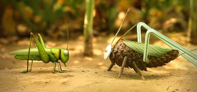 Die Winzlinge – Insekten außer Rand und Band