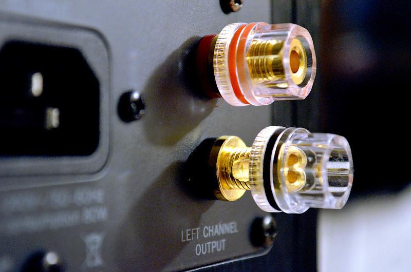 Die hochwertigen Schraubklemmen für das Lautsprecherkabel stehen stellvertretend für die hohe Qualität der Multi Monitor 220.