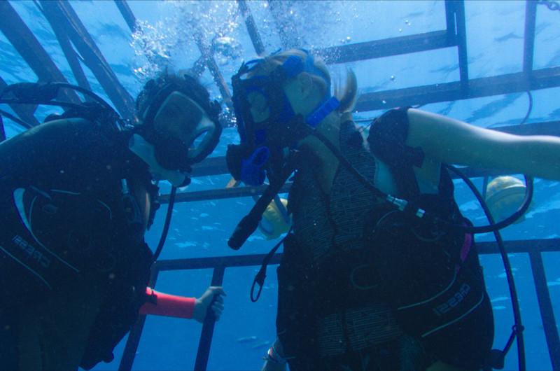 Kate und Lisa geraten beim Haitauchen in eine brenzlige Lage. (© Universum Film)
