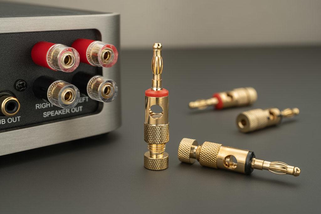 Im Lieferumfang des DS-A101-G sind Bananenstecker zum Anschluss von Kabeln mit größerem Querschnitt enthalten.