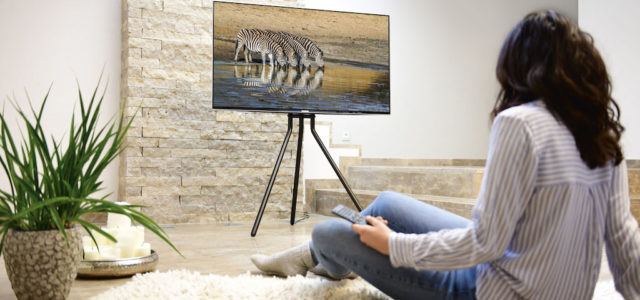 Hama TV-Stand: TV-Bodenständer im Staffelei-Design