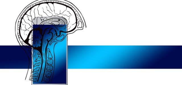 Gehirnströme durch das Smartphone kontrollieren: Forscher entwickeln neuartiges Implantat